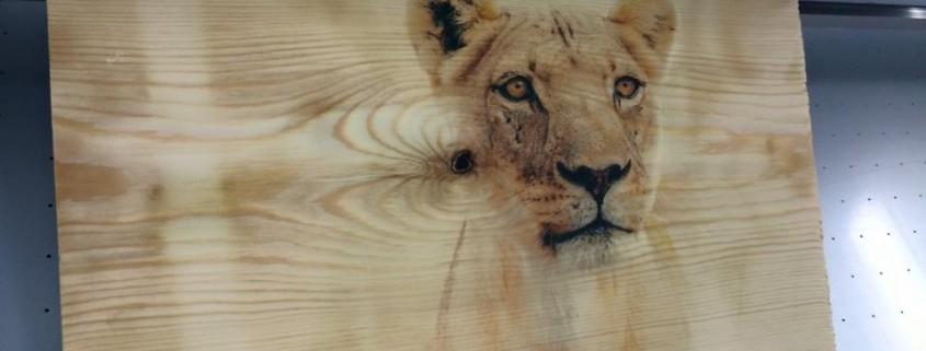 Holzdruck mit dem innovativen Direktdruck auf echtem Holz